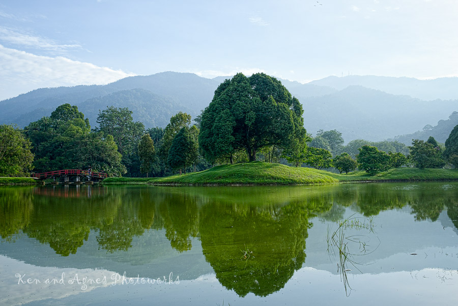 Enchanting Taiping Lake Gardens – Ken and Agnes Photoworks